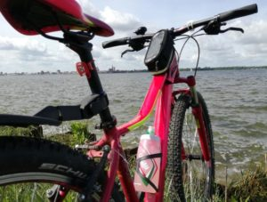 Cube Access WLS berry 'n pink 29er - Mod. 2017