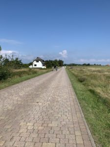 Radweg von Neuendorf nach Kloster auf Hiddensee
